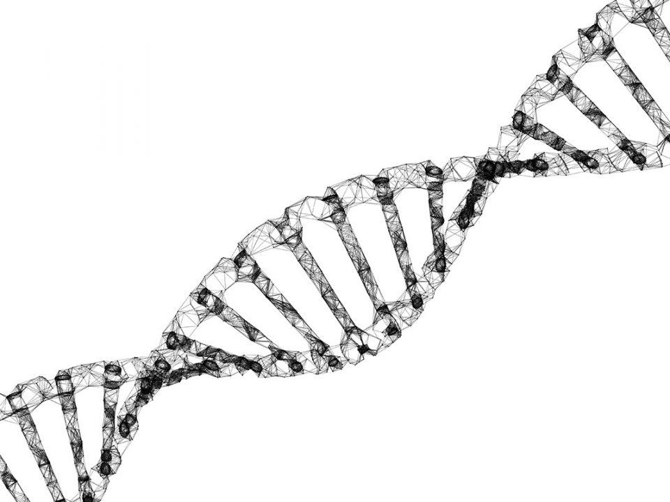 8 Haftada 3 Yıl Gençleşmek Mümkün 12 Nisan'da Aging'de yayınlanan bir çalışmayla ilk kez yaşam tarzı ve beslenme seklinde yapılan değişimlerin kişinin biyolojik yasini çok hızlı bir şekilde gerilettiği bilimsel verilerle kanıtlandı. Yaşlanma kronik hastalıkların en önemli gerekçesi olduğundan bu gerileme daha iyi ve uzun yaşamamızı sağlayabilir.